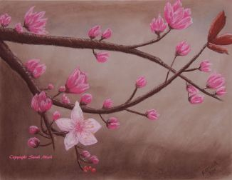 Cherry Blossoms Soft Pastel marked